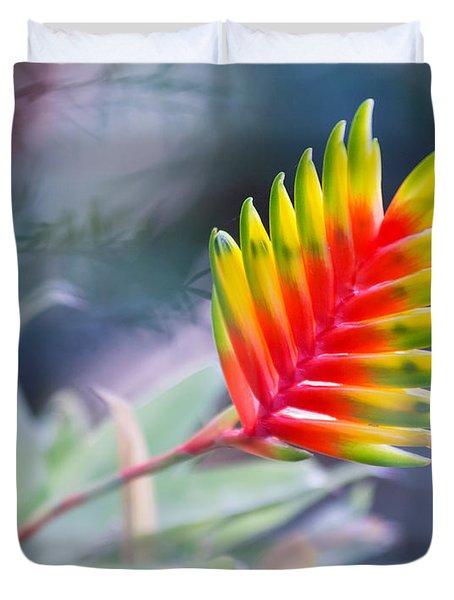 Bromeliad Beauty Duvet Cover