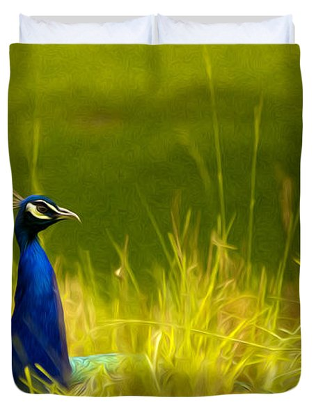Bronx Zoo Peacock Duvet Cover