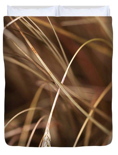 Bronze Duvet Cover by Anne Gilbert
