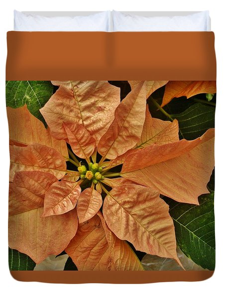 Bronze Poinsettia 3 Duvet Cover by VLee Watson