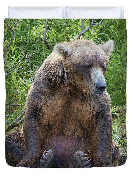 Brown Bear Sitting Waiting For Salmon Duvet Cover by Dan Friend
