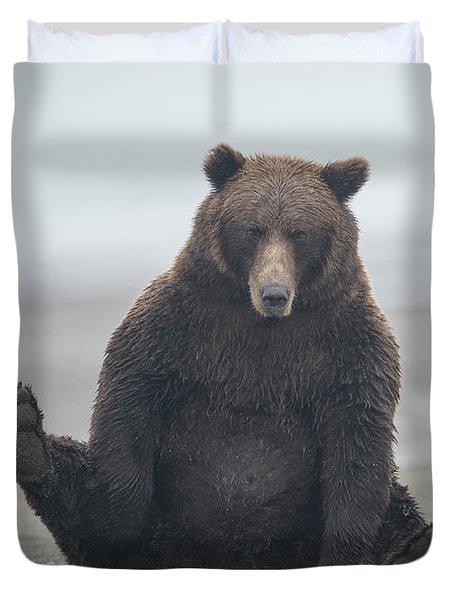 Brown Bear, Ursus Arctos, Sitting Duvet Cover