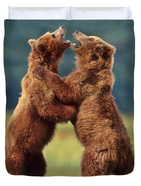 Brown Bears Sparring Duvet Cover by Frans Lanting MINT Images