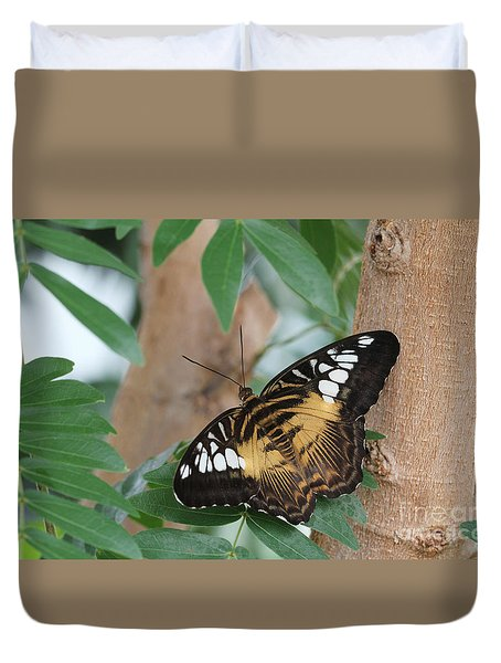 Brown Clipper Butterfly #5 Duvet Cover by Judy Whitton