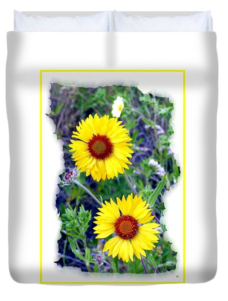 Brown- Eyed Susans Duvet Cover by Will Borden