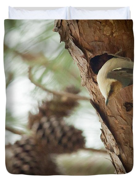 Brown Headed Nuthatch Duvet Cover by Linda Unger