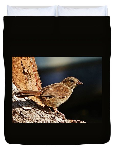 Duvet Cover featuring the photograph Brown Is Beautiful by VLee Watson