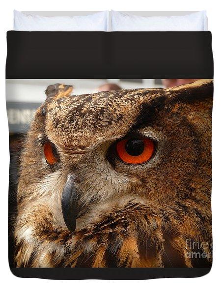 Brown Owl Duvet Cover by Vicki Spindler