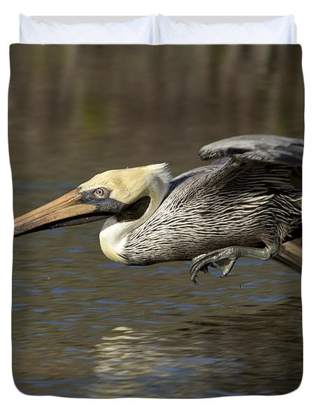 Duvet Cover featuring the photograph Brown Pelican Fishing Photo by Meg Rousher