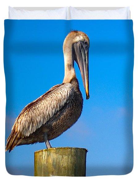 Duvet Cover featuring the photograph Brown Pelican - Pelecanus Occidentalis by Carsten Reisinger