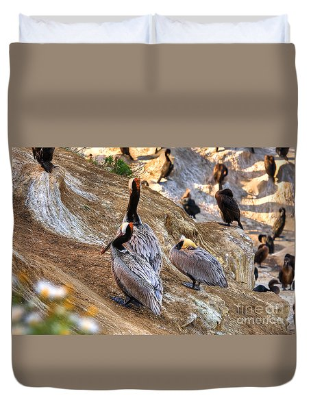Brown Pelicans At Rest Duvet Cover by Jim Carrell