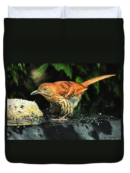 Duvet Cover featuring the photograph Brown Thrasher by Dennis Baswell