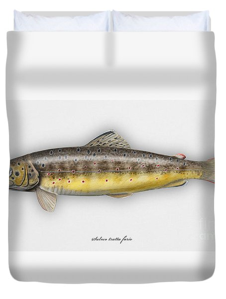 Brown Trout - Salmo Trutta Morpha Fario - Salmo Trutta Fario - Game Fish - Flyfishing Duvet Cover