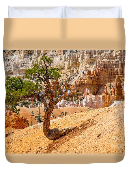 Bryce Canyon Np Duvet Cover by Juergen Klust