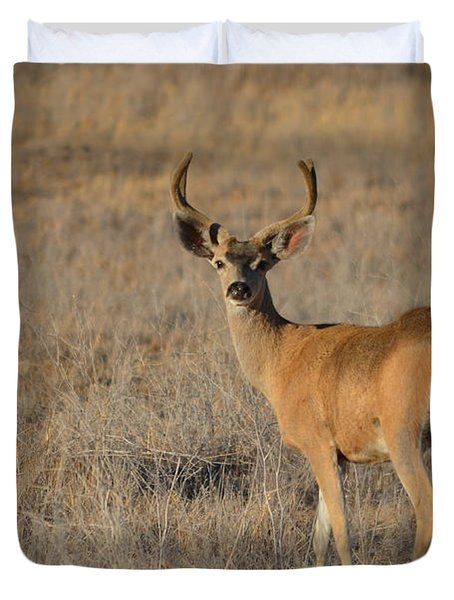 Buck 4 Duvet Cover