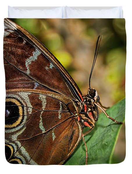 Duvet Cover featuring the photograph Blue Morpho Butterfly by Olga Hamilton