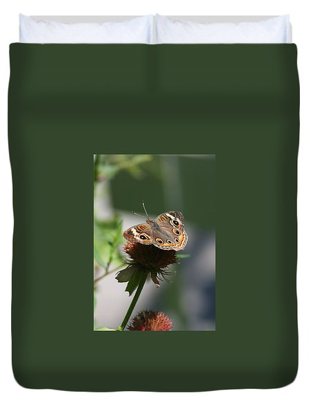 Duvet Cover featuring the photograph Buckeye by Karen Silvestri