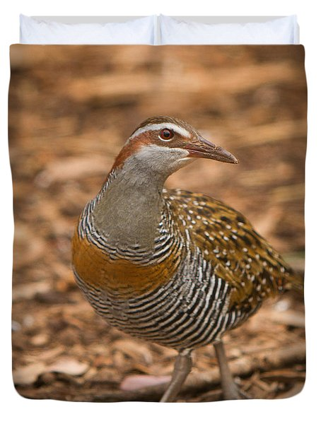 Buff-banded Rail Duvet Cover