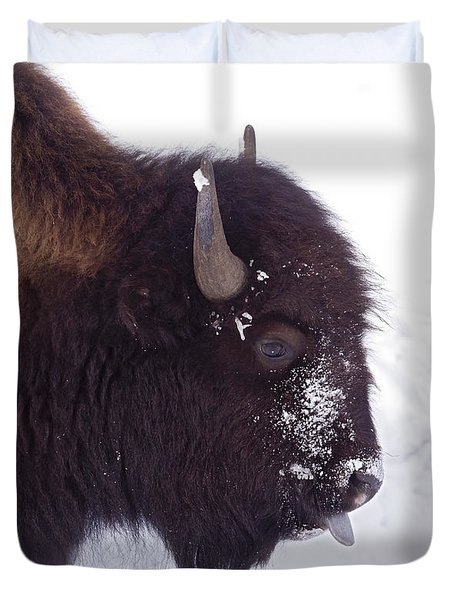 Buffalo In Snow   #6983 Duvet Cover by J L Woody Wooden