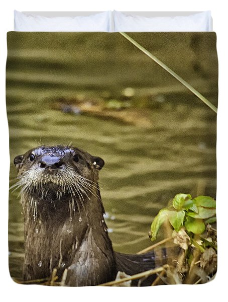 Buffalo National River Otter  Duvet Cover by Michael Dougherty