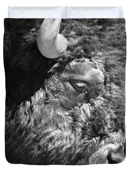 Buffalo Portrait Duvet Cover by Robert Frederick