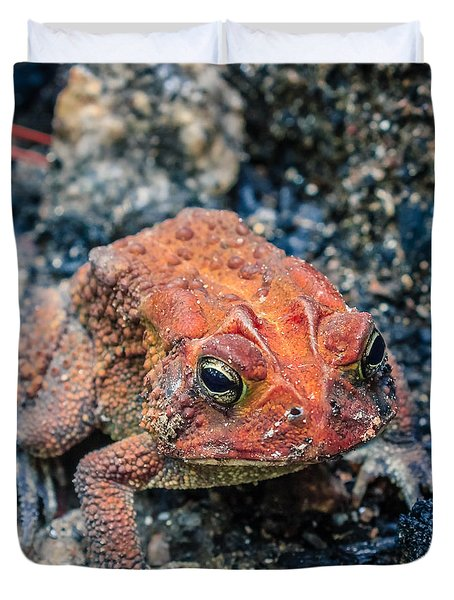 Duvet Cover featuring the photograph Bufo Terrestris by Rob Sellers