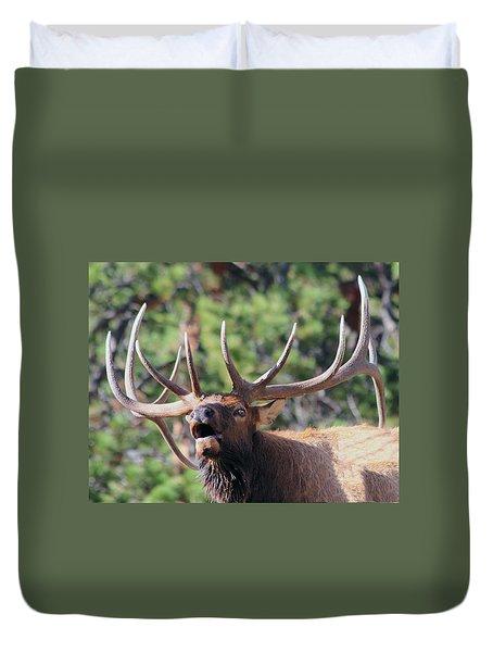 Bugling Bull Duvet Cover