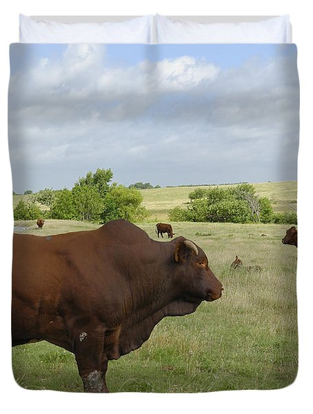 Duvet Cover featuring the photograph Bull And Cattle by Charles Beeler