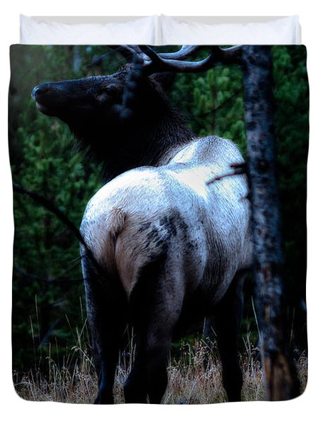 Duvet Cover featuring the photograph Bull Elk In Moonlight  by Lars Lentz