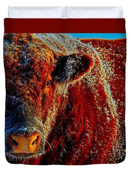 Bull On Ice Duvet Cover