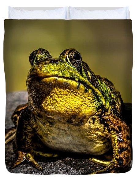 Bullfrog Watching Duvet Cover by Bob Orsillo