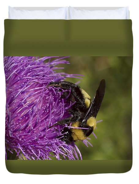 Bumble Bee On Thistle Duvet Cover by Shelly Gunderson