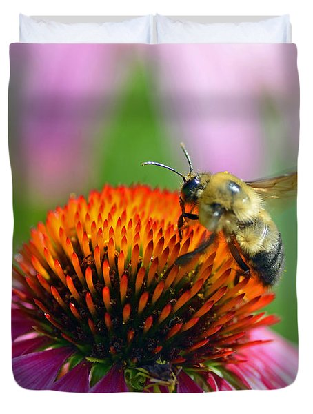Bumblebee On A Coneflower Duvet Cover