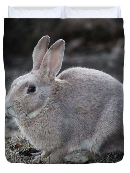 Duvet Cover featuring the photograph Bunny by Ann E Robson