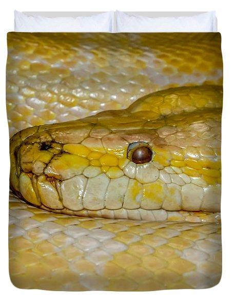 Burmese Python Duvet Cover by Ernie Echols