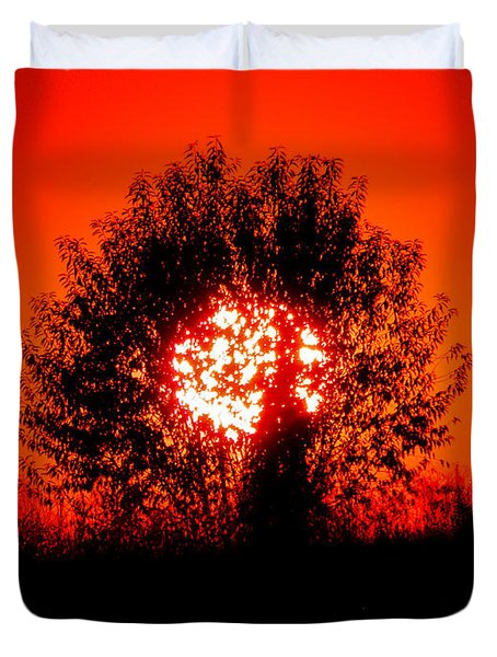 Burning Bush Duvet Cover by Nick Kirby