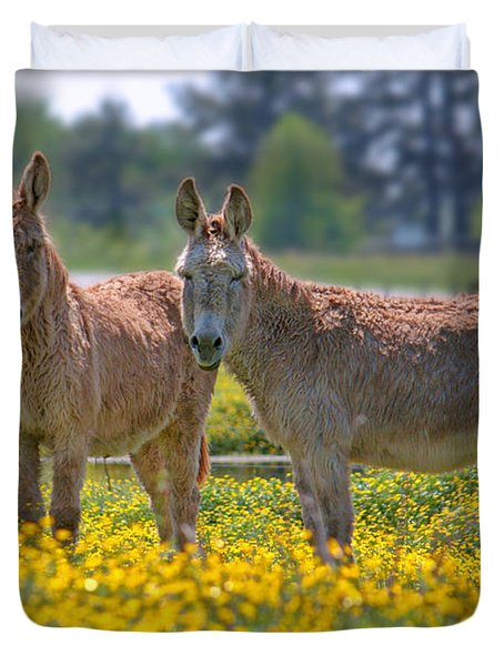 Burros In The Buttercups Duvet Cover