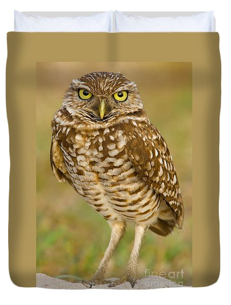 Burrowing Owl Duvet Cover by Jerry Fornarotto