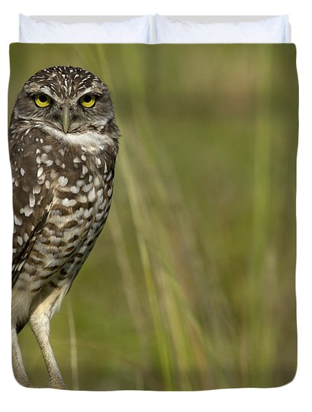 Burrowing Owl Stare Duvet Cover