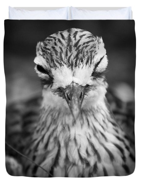 Bush Stone Curlew Duvet Cover by Craig Dingle