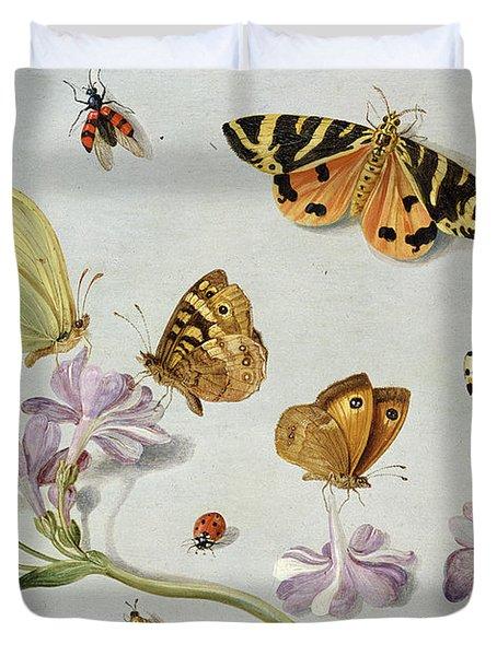 Butterflies Duvet Cover by Jan Van Kessel
