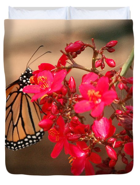 Duvet Cover featuring the photograph Butterfly 1 by Leticia Latocki