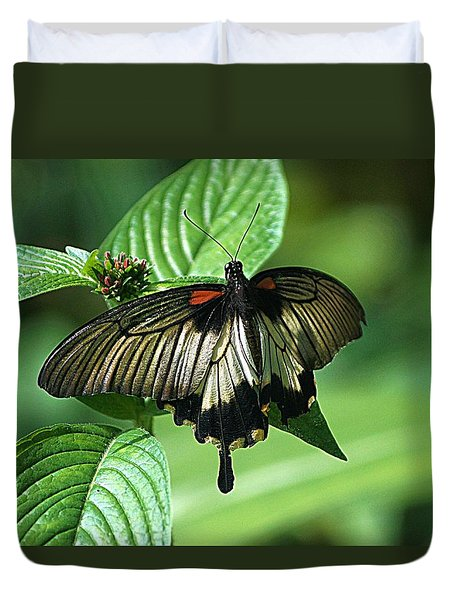 Duvet Cover featuring the photograph Butterfly 2 by Kathy Churchman