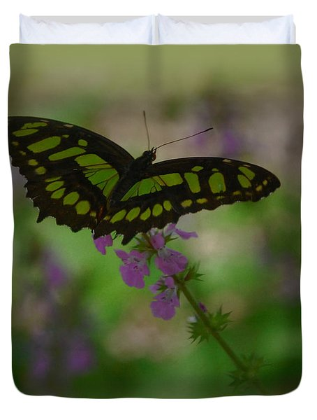 Duvet Cover featuring the photograph Butterfly 4 by Leticia Latocki