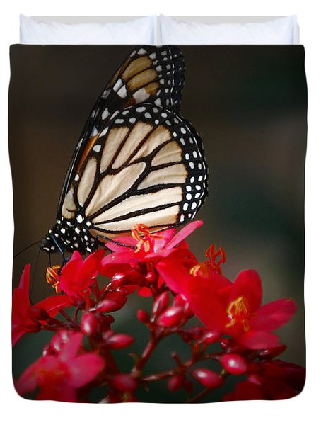 Duvet Cover featuring the photograph Butterfly 6 by Leticia Latocki