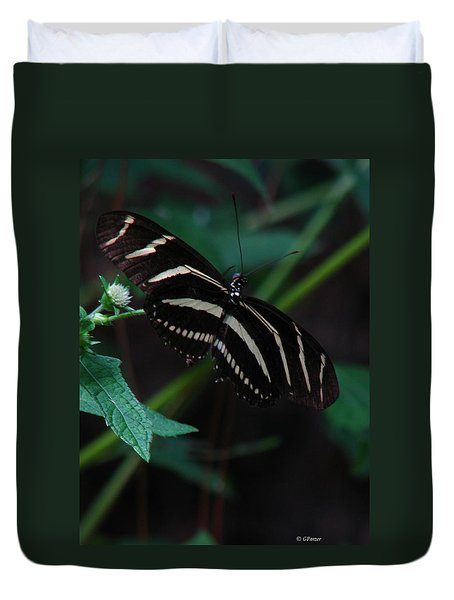 Butterfly Art 2 Duvet Cover