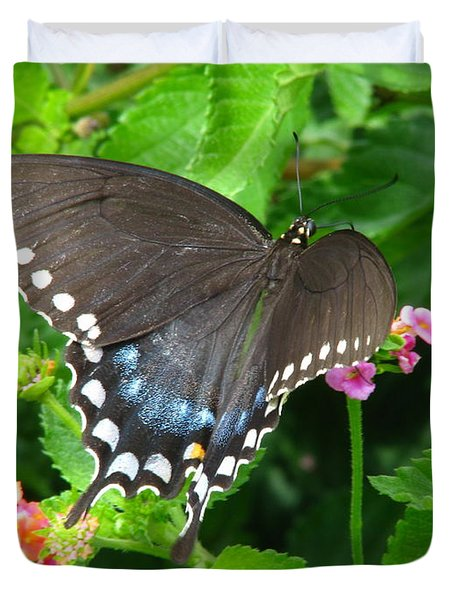 Butterfly Ballot Duvet Cover by Greg Patzer
