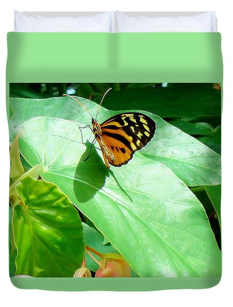 Duvet Cover featuring the photograph Butterfly Chasing Shadow by Janette Boyd