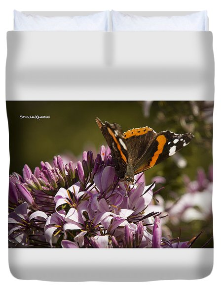 Duvet Cover featuring the photograph Butterfly Close Up by Stwayne Keubrick