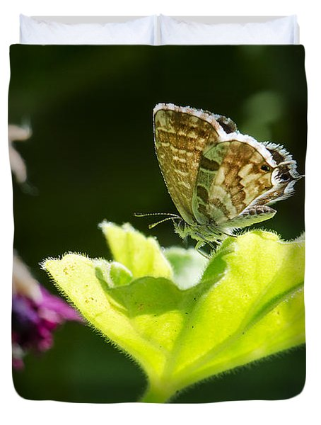 Butterfly Duvet Cover by Giovanni Chianese